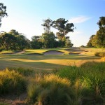 Huntingdale_03TeeBushes_7036